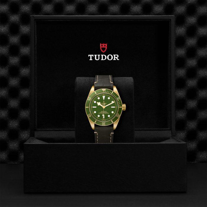 Tudor Black Bay Fifty-Eight 18k M79018V-0001