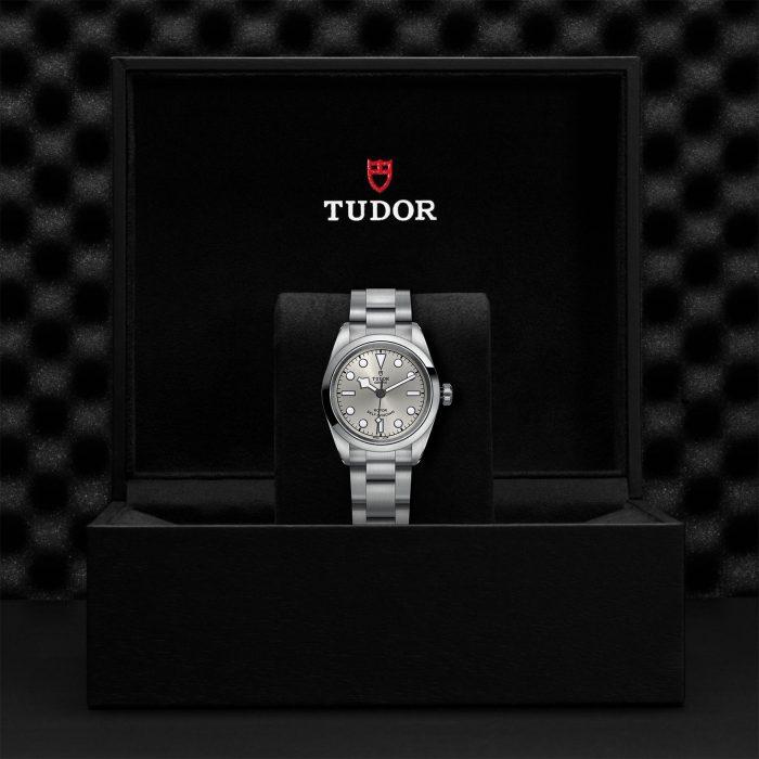Tudor Black Bay 32 M79580-0007